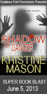 SBB Shadow of Danger Book Cover Banner