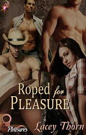 What's it like to be Roped For Pleasure?