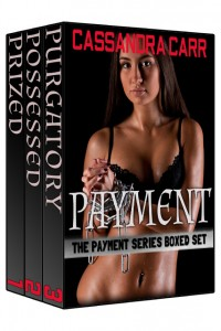 Payment Series Boxed Set 3d graphic