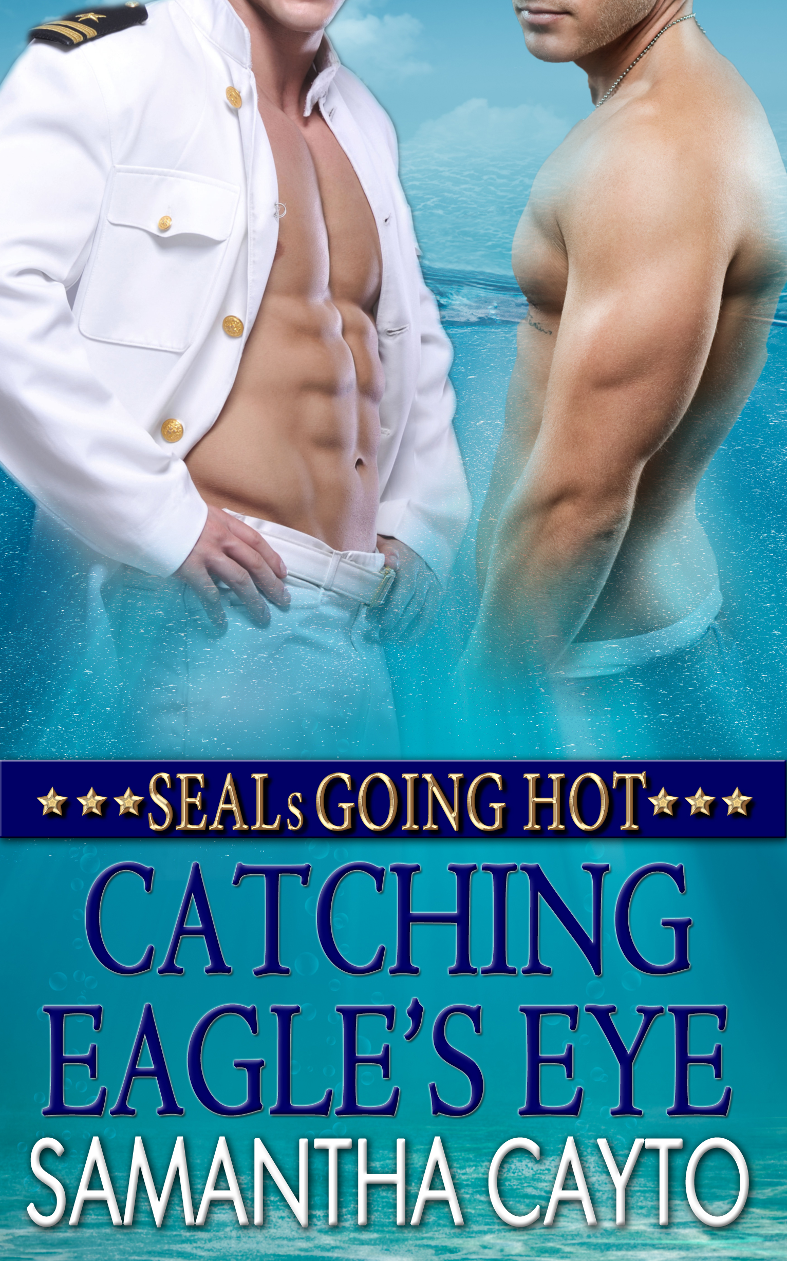 SEALs Going Hot – Catching Eagle's Eye