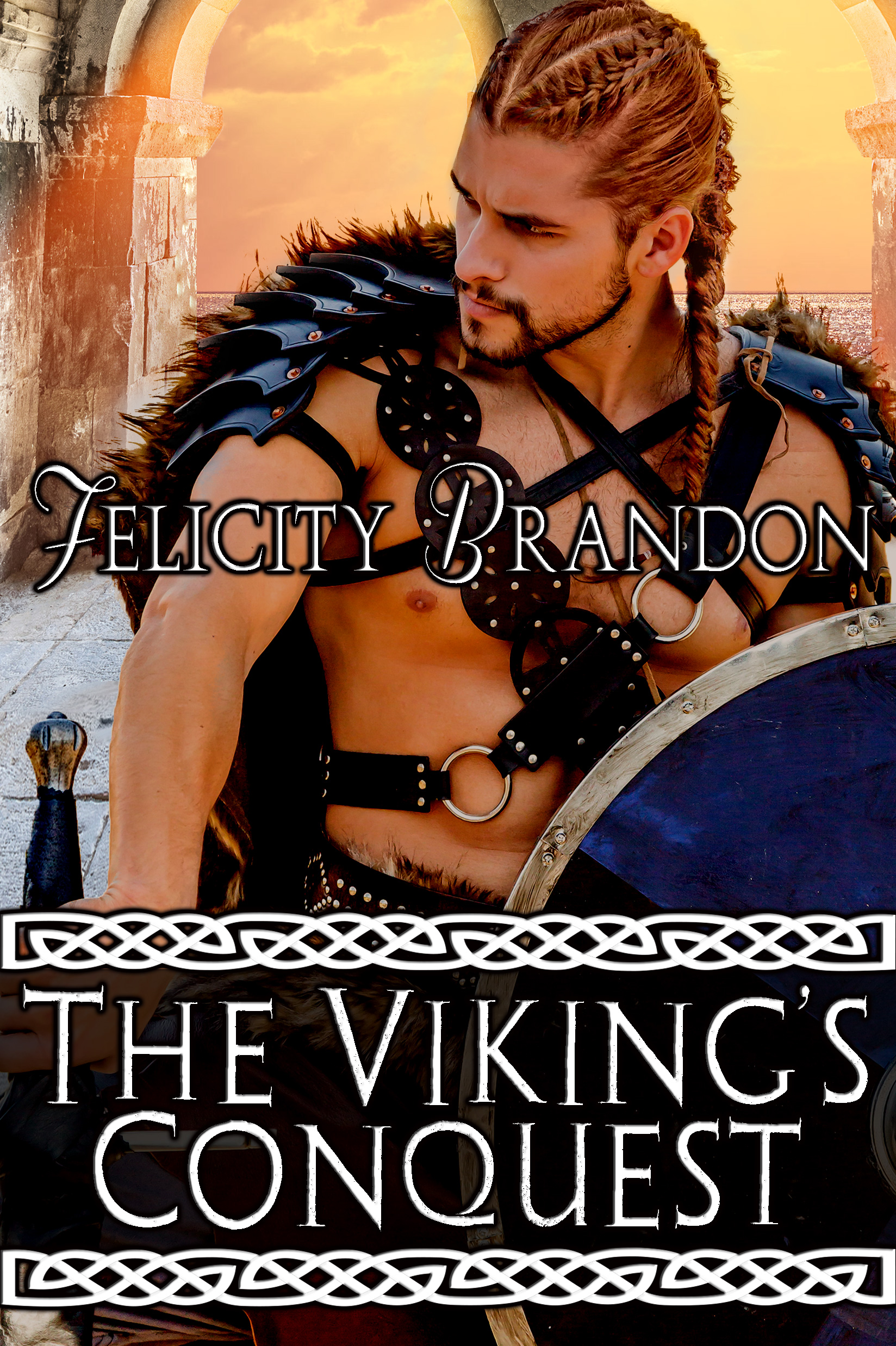 The Viking's Conquest-new and hot from Felicity Brandon